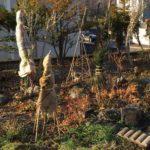 2017/11月の菜園日記 冬囲いする時期と畑の片付け