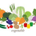 主婦が取りたい野菜にまつわる民間資格5つを比較してみる