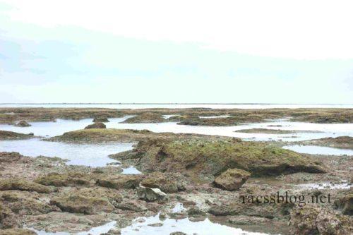 浜辺の茶屋引き潮