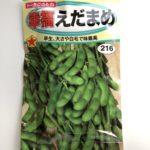 枝豆の育て方|北海道の種まきの時期とは?初心者でも簡単です