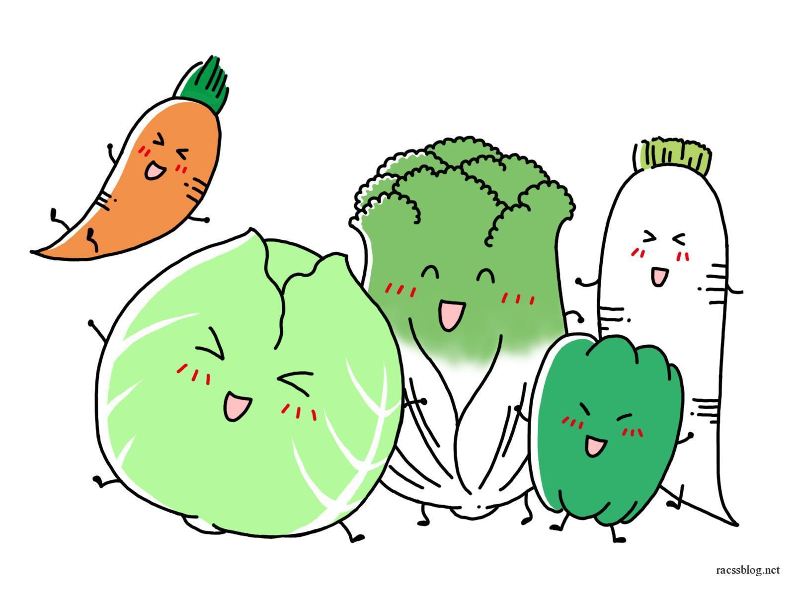 「野菜スペシャリスト」は独学できない!けれど主婦の自信とスキルアップに役立つ資格