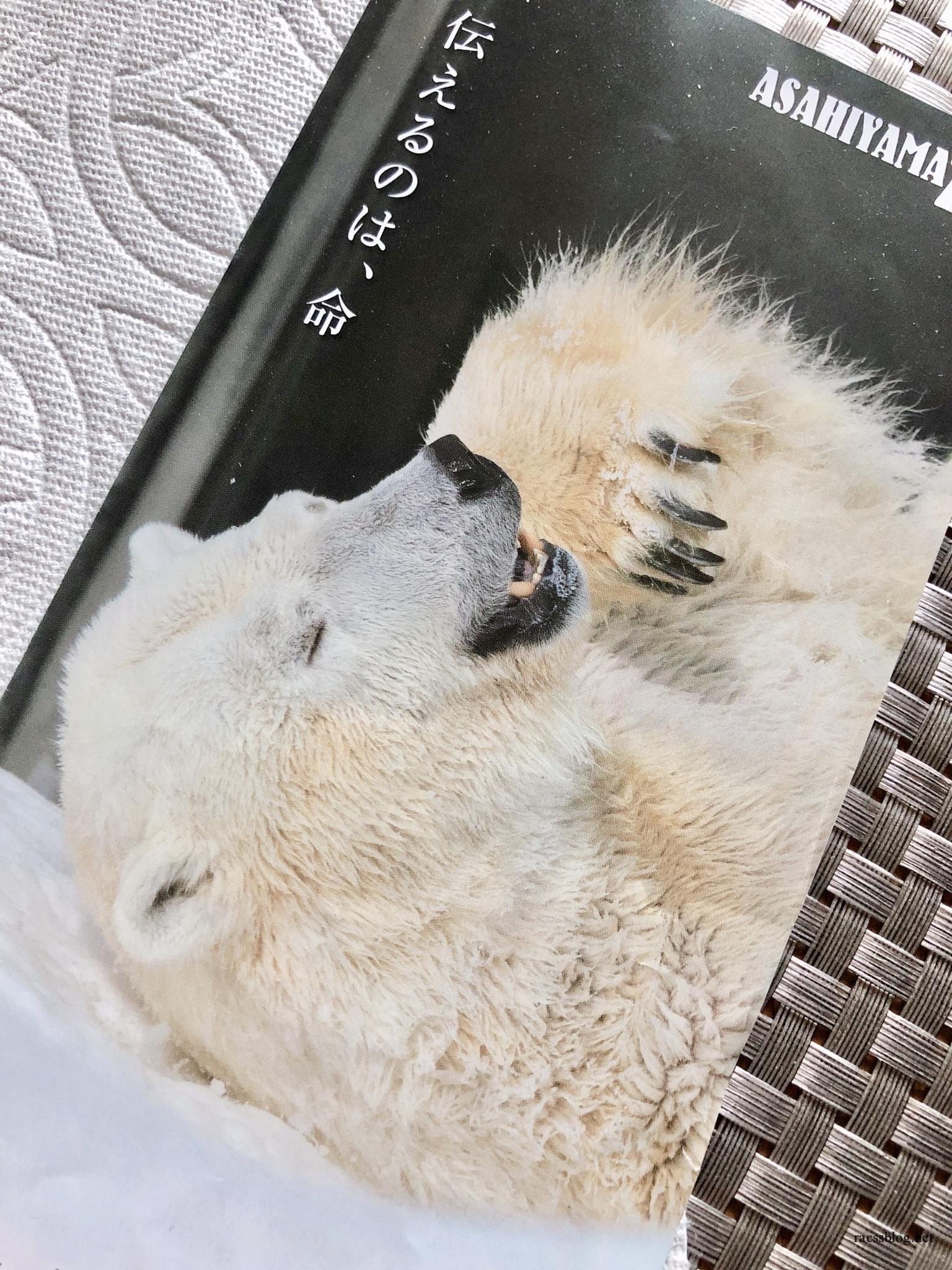 旭山動物園は一日じゃ足りない!次の日も見れるお得なチケットとは?3つの割引購入方法から選んでね
