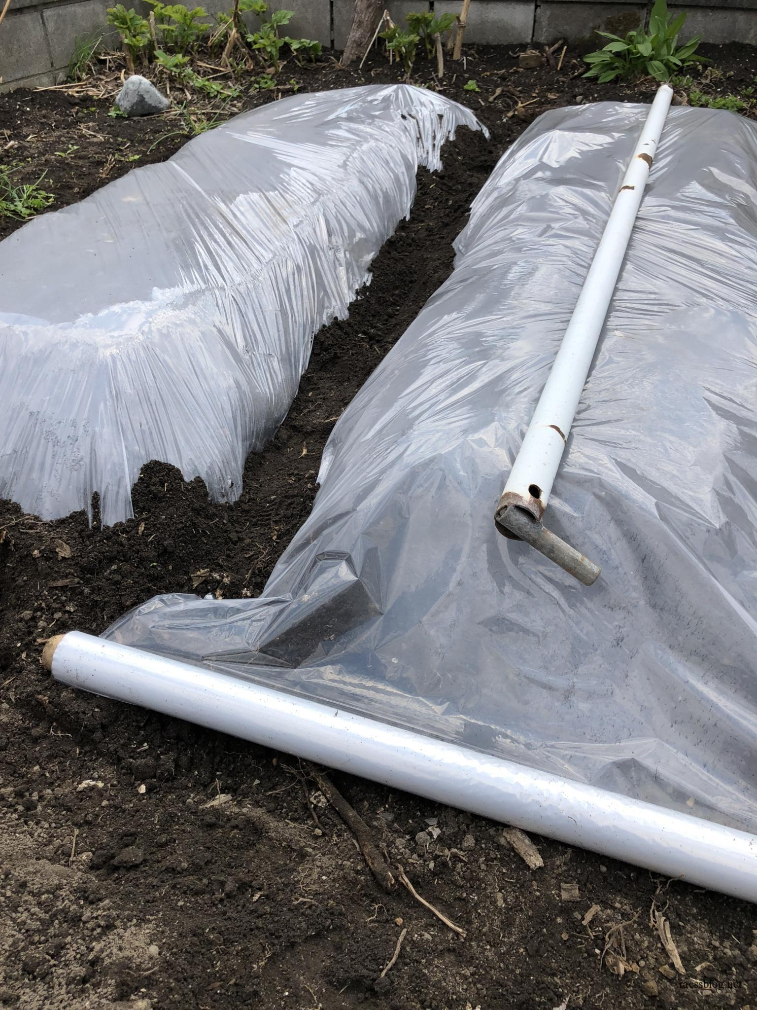 家庭菜園の畝立てとほうれん草種まき|5月前半の記録