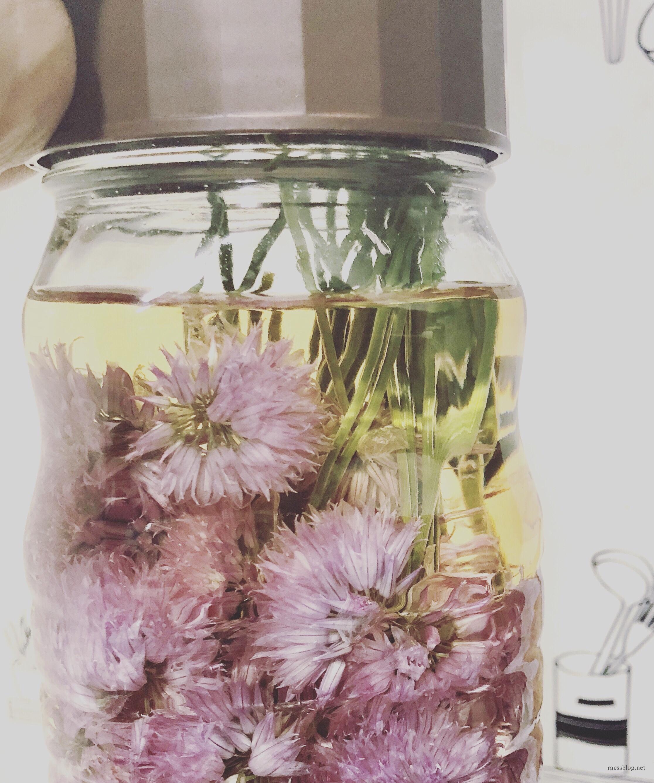 チャイブの花満開!チャイブビネガーの作り方とおすすめ活用レシピ