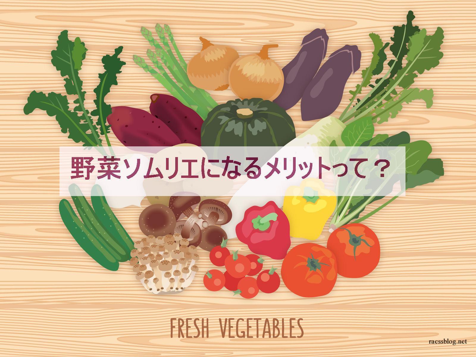 野菜ソムリエ費用は高い・・・独学できず更新費用もかかります|それでも取得するべき人とは