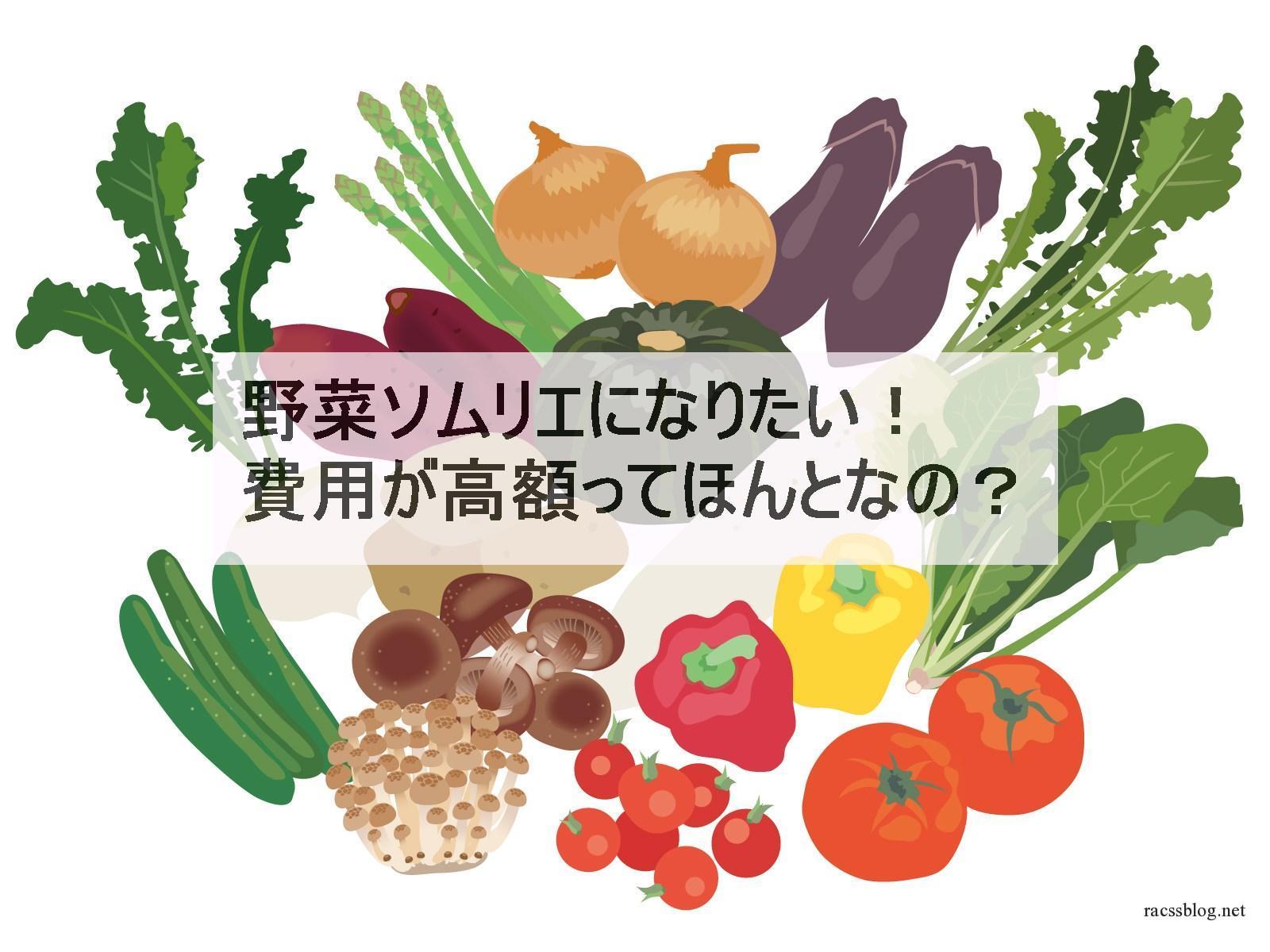 野菜ソムリエになるには|ランク別講座費用をチェックして見きわめましょう
