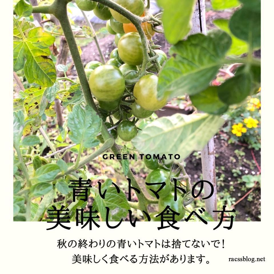 青いトマトの美味しい食べ方