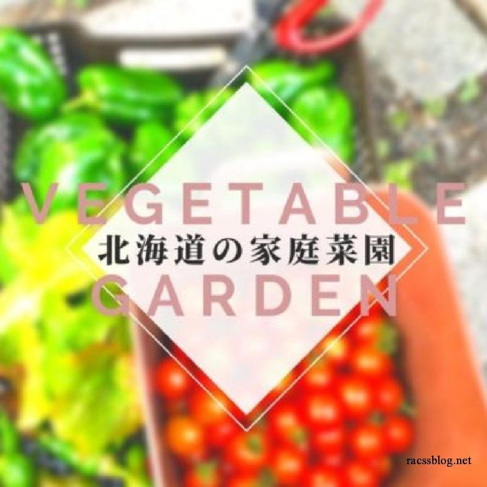 北海道の家庭菜園コラム