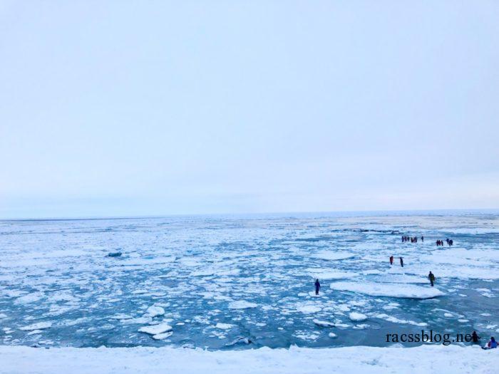 流氷の上を歩くのは危険