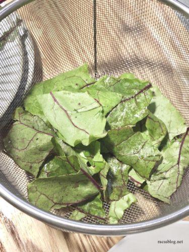 ビーツの葉をサラダに