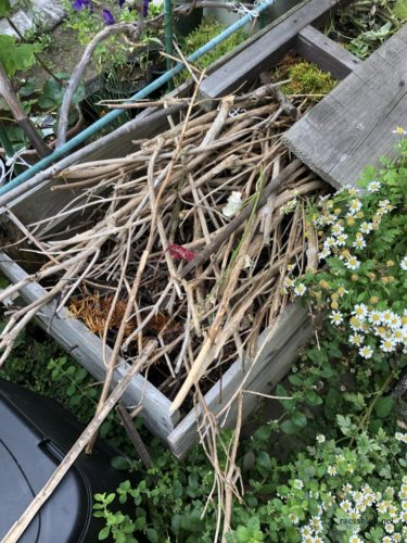 庭の剪定枝