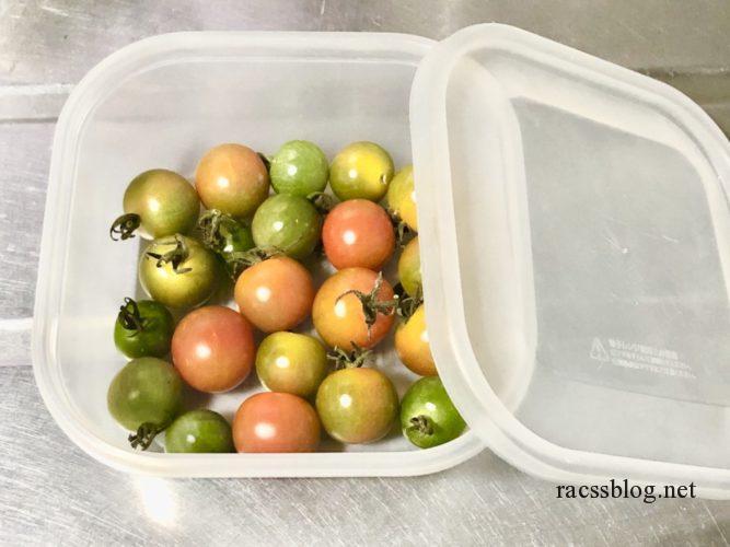 ミニトマトの追熟