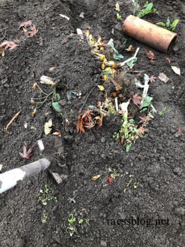 畑の残渣を埋める